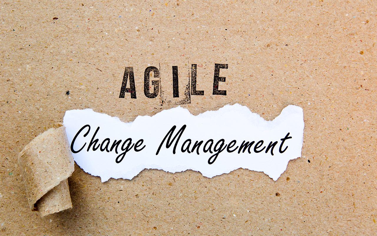Agile Continuous Changemanagement